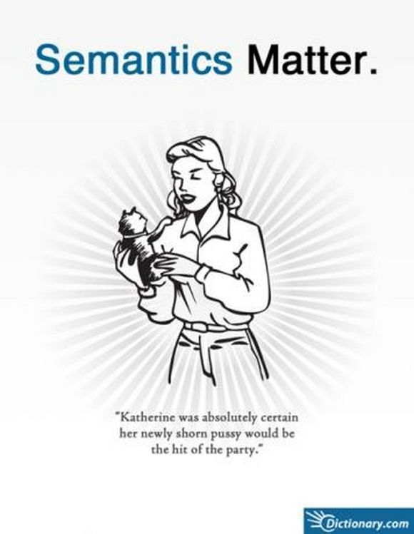The words: Semantics Matter above a woman holding a kitty cat. The words below say: Katherine was absolutely certain that her newly shorn pussy would be the hit of the party.