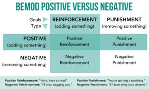 Behavior Modification Psitive Vs. Negative.