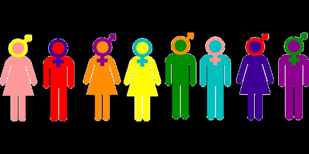 On Gender Inclusive Language