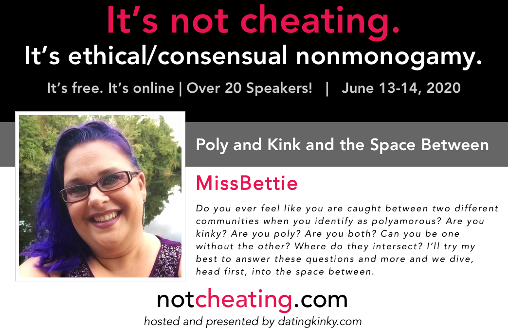It's Not Cheating: Poly and Kink and the Space Between